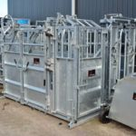Galvanized Steel Cattle Crush