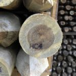 UC4 Redwood Treated Posts